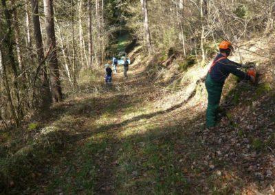 Freischneiden Waldwege